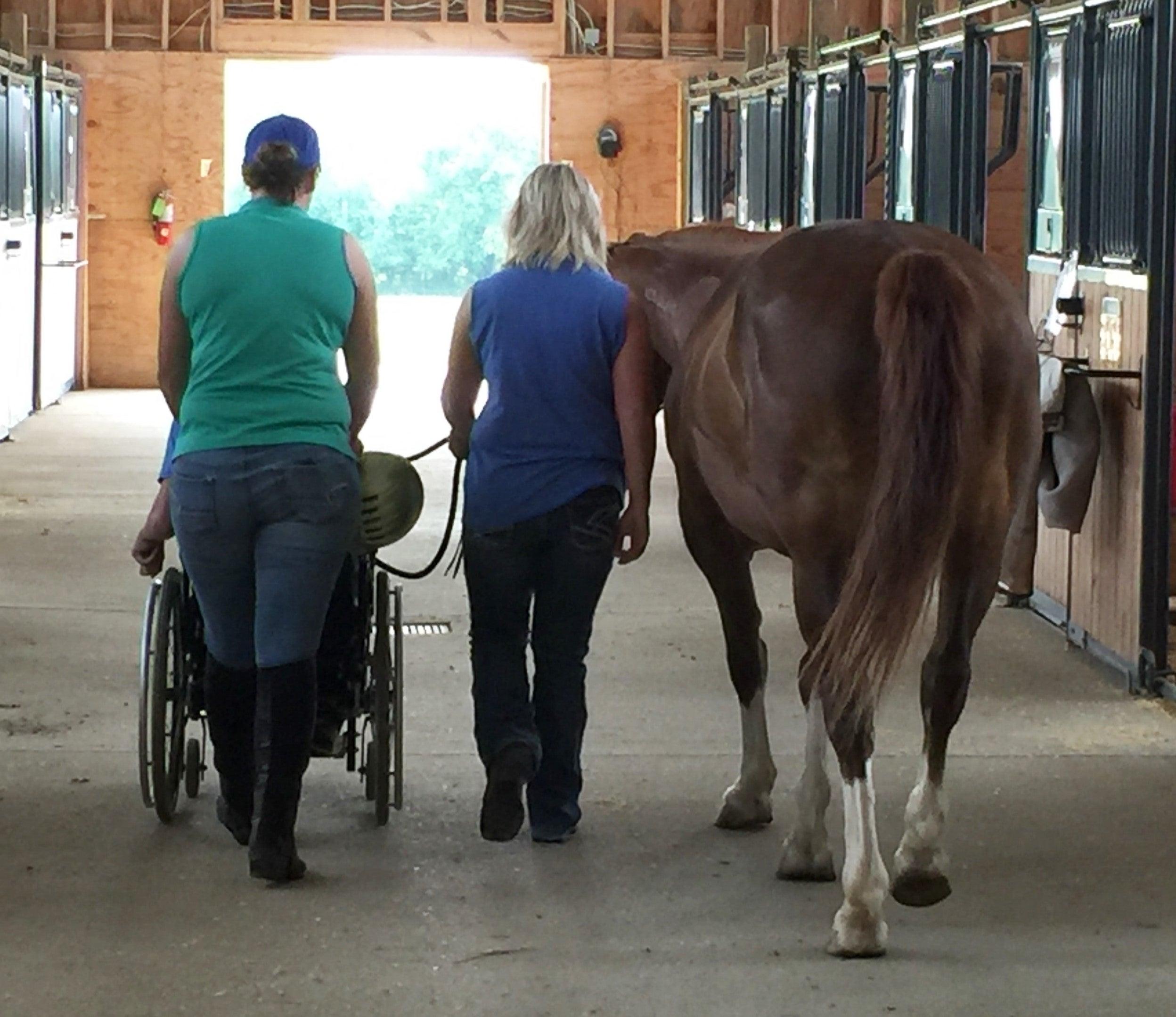 Montgomery Area Nontraditional Equestrians