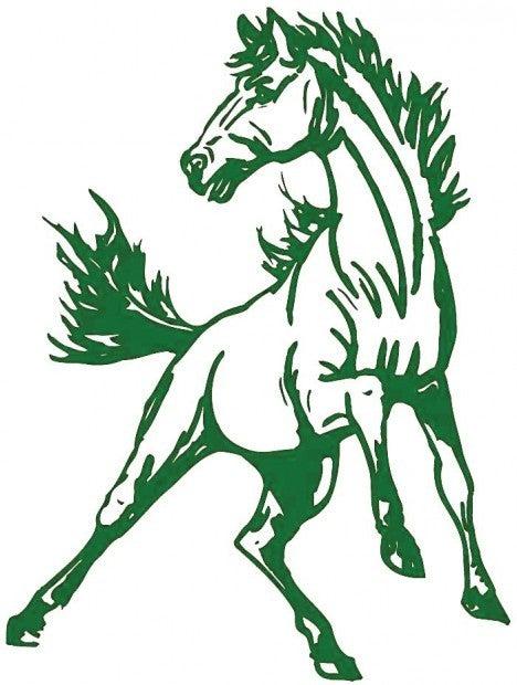Mustang Shop
